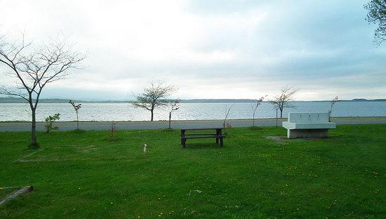 クッチャロ湖畔キャンプ場 サイトの状態 その1