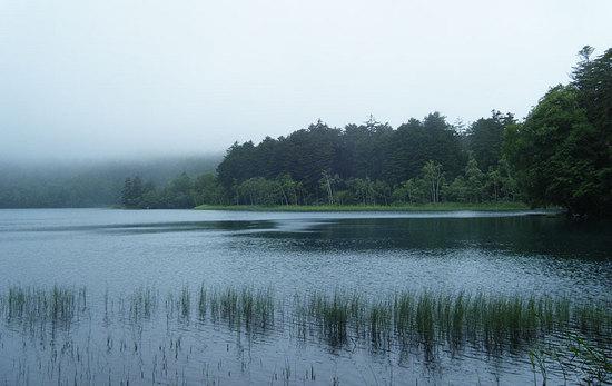 オンネトー国設野営場  湖畔の眺め