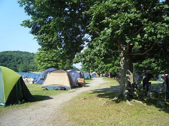 和琴半島湖畔キャンプ場のサイト状態 その1
