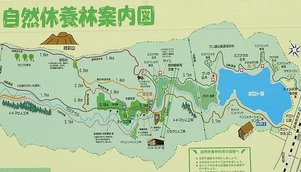 ポロトの森キャンプ場の案内図