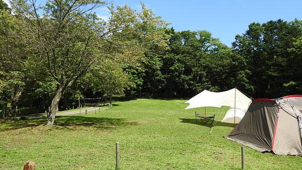 白老ふるさと2000年ポロトの森キャンプ場