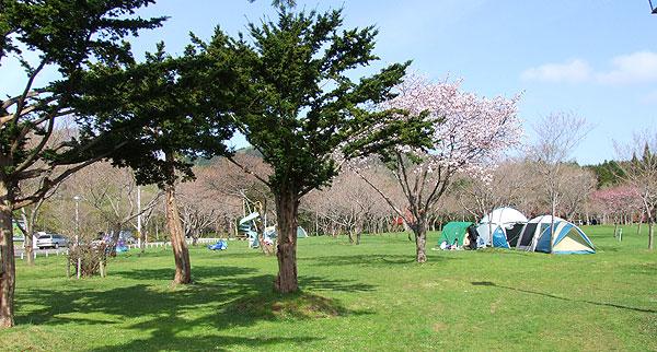 長万部公園キャンプ場