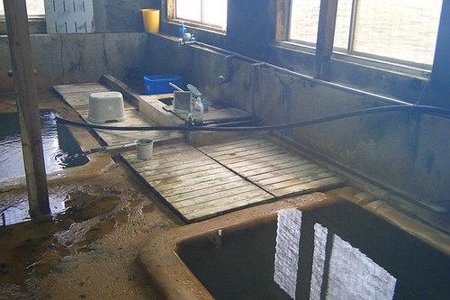 濁川温泉 新栄館の浴室と洗い場