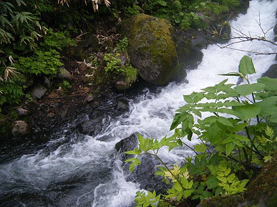 ヌタプカウシペの下を流れる勇駒別の清流