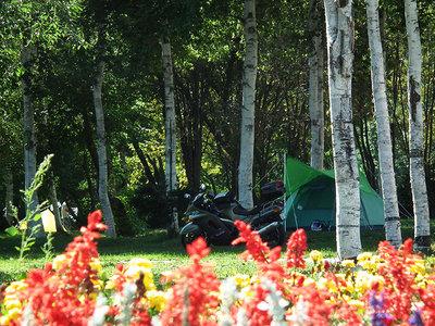 2010年の美深アイランドキャンプ場にて
