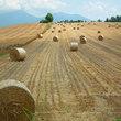 2011年上富良野町の牧草ロール
