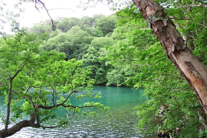2014年7月道東ツーリング(Vol.3)
