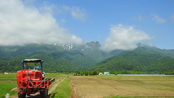 2017-06-17-山部付近からの芦別岳