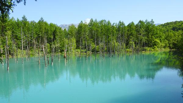 2017-06-17-美瑛の青い池