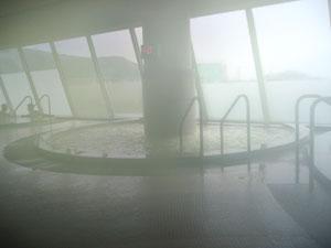 童夢温泉の内風呂