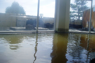 ながぬま温泉の内風呂