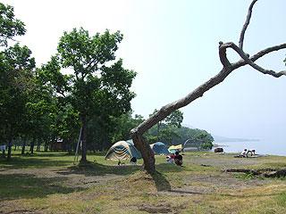 砂湯前のキャンプ場