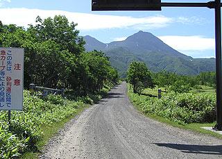 カムイワッカに向う道道